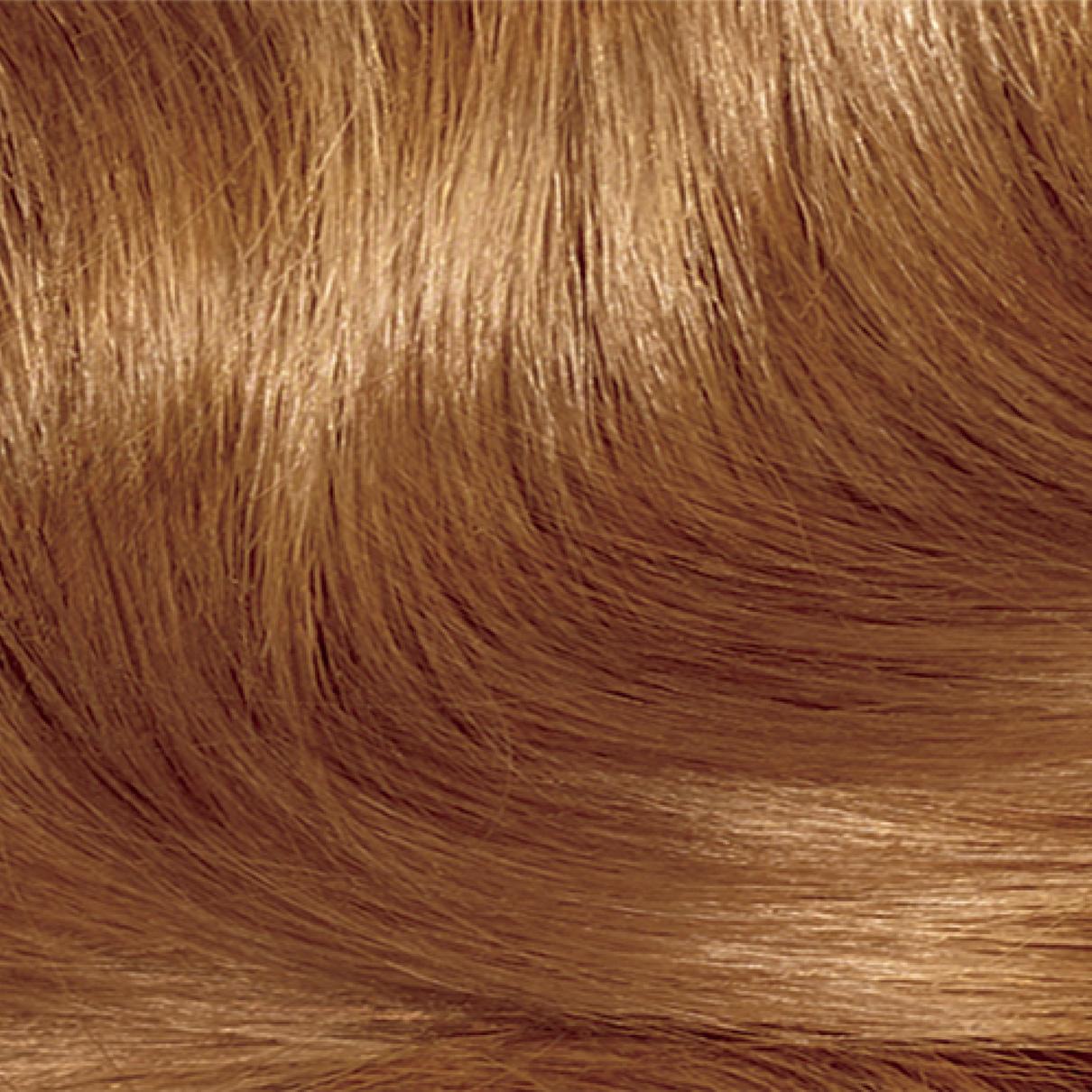 Permanent hair color clairol nice n easy lighter golden brown 8r medium reddish blonde nvjuhfo Gallery
