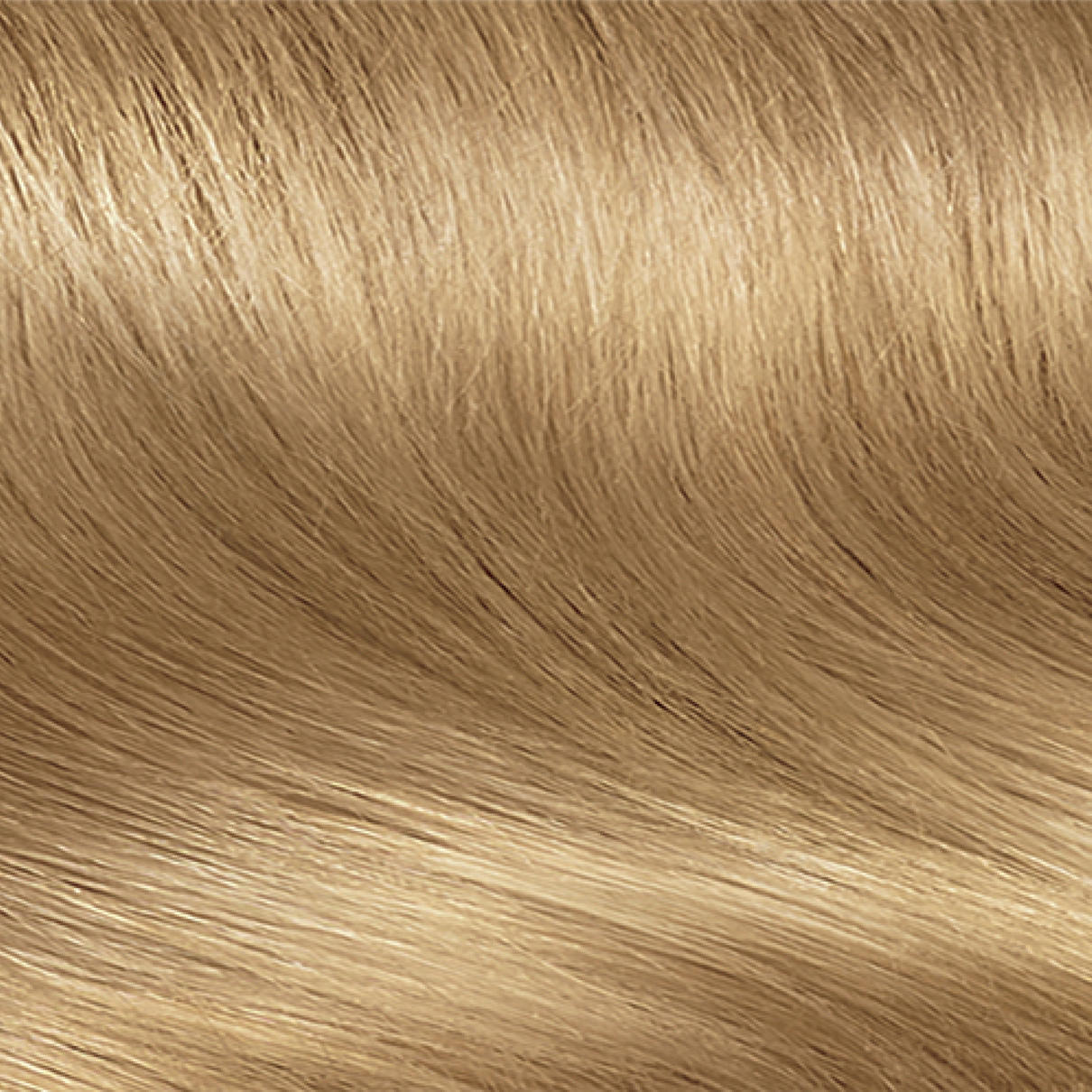 Permanent hair color clairol nice n easy 8 medium neutral blonde nvjuhfo Image collections