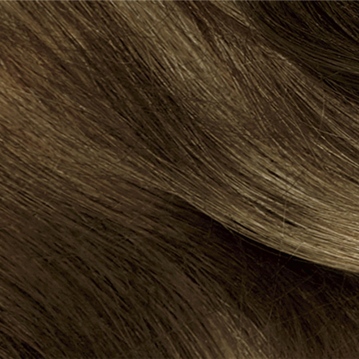 Brunette Hair Color Clairol