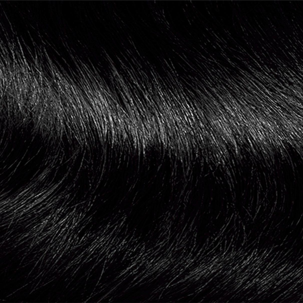 Permanent Hair Color | Clairol Nice \'N Easy